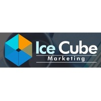 Ice Cube Marketing