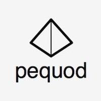 株式会社pequod