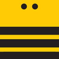 Traffic Bees