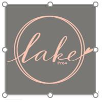 LAKE (HK) COMPANY LIMITED