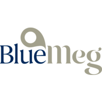 Bluemeg (Hong Kong) Limited