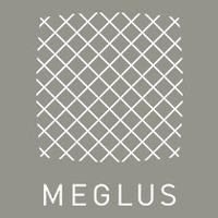 株式会社メグラス