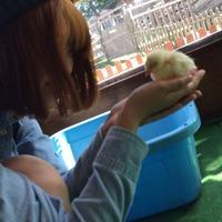 Kazumi Tanabe