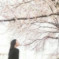 Risa Miura