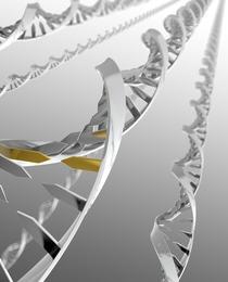 新オフィス移転!ゲノム解析で顧客の課題を解決したいセールスをWANTED!