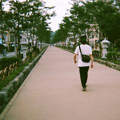 Mizuki Shirai