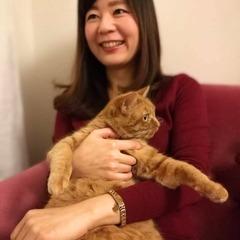 Sachi Enomoto
