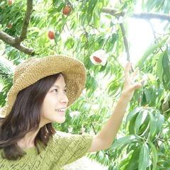 Akiko Og