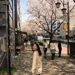 Yoko Akima