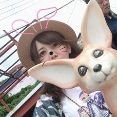 菅野 絵莉香