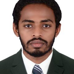 Mohamed Amir Elbakri