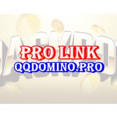 Pro Link