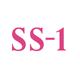 中学受験専門個別指導教室SS-1