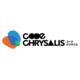 Code Chrysalis Blog